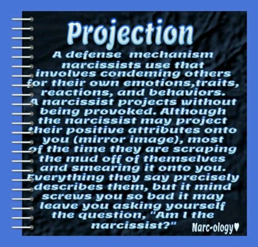 Projection definition