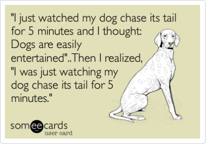 chasing your tail